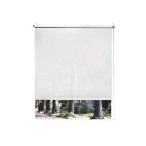Roller Shades with Cord for Virtual Window